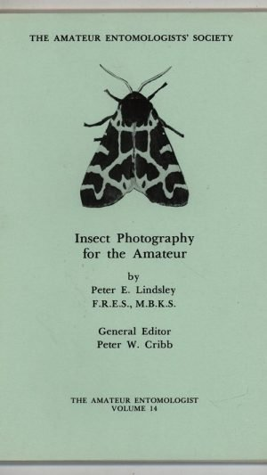 Insect Photography for the Amateur