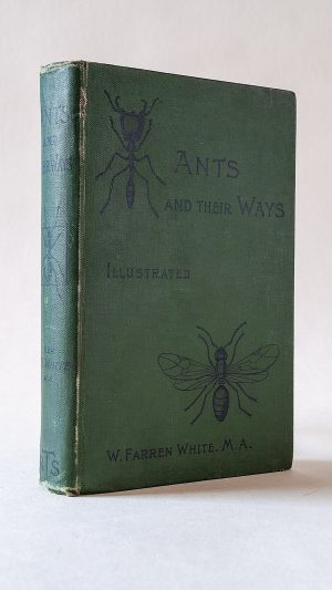 Ants and Their Ways: With illustrations, and an appendix giving a complete list of genera and species of the British ants